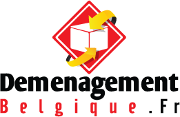 logo demenagements belgique